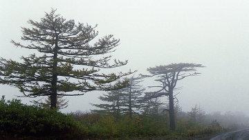 Остров Итуруп на Сахалине, архивное фото
