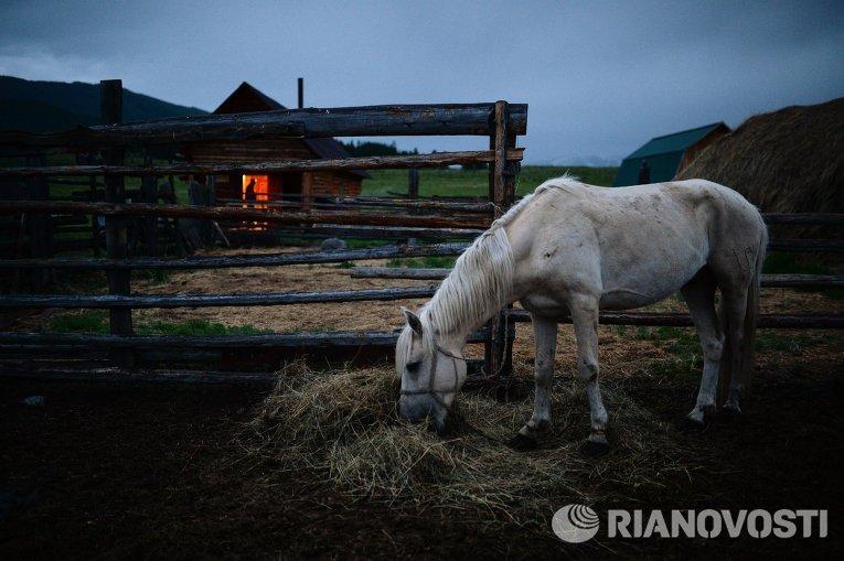 Новости уфсин по ставропольскому