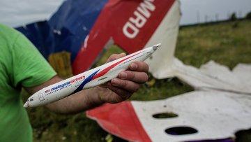 Поисковые работы на месте крушения малайзийского лайнера Boeing 777 в районе Шахтерска. Архивное фото.