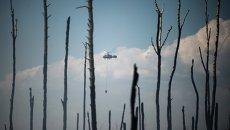 Вертолет пожарной охраны на месте лесных пожаров в Тверской области