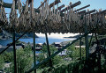 Вид на рыбацкий поселок Намсос в Норвегии