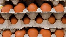 Куриные яйца