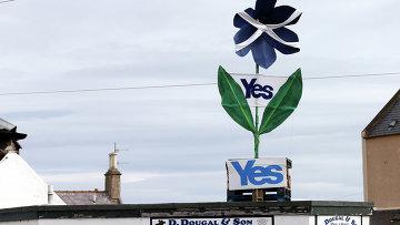 Знак в поддержку независимости Шотландии над магазином. Архивное фото