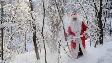 Дед Мороз в зимнем подмосковном лесу. Архив