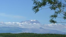 Вид на вулкан Шивелуч. Архивное фото