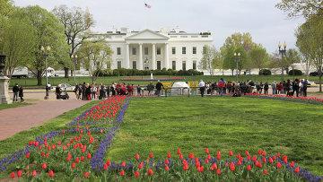 Вид на здание Белого дома в Вашингтоне.