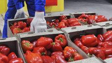 Сотрудник склада выполняет отгрузку поступившего товара. Архивное фото