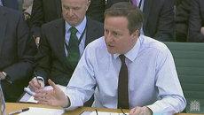Кэмерон объяснил, чем будут заниматься британские военные на Украине