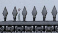 Навершие забора в Александровском саду