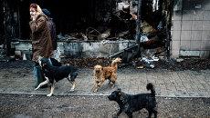 Жители Донецка и бродячие собаки в Киевском районе