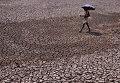 Житель Индии с зонтом идет по высохшему пруду на окраине города Бхубанешвар. Май 2015