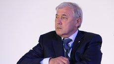 Председатель комитета Государственной Думы Российской Федерации по экономической политике, инновационному развитию и предпринимательства Анатолий Аксаков. Архивное фото