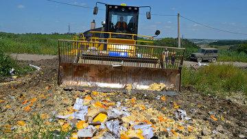 Уничтожение санкционной продукции в Белгородской области. Архивное фото