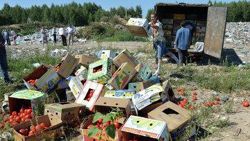Уничтожение помидоров, задержанных на российско-белорусской границе