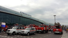 Пожарные машины у аэропорта Домодедово