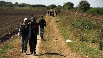 Беженцы заходят на территорию Евросоюза в Венгрии в районе села Рёске. Архивное фото