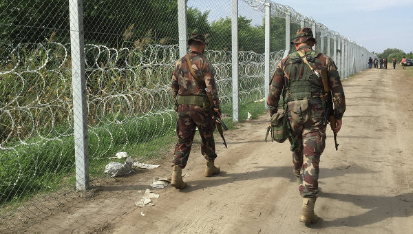 Венгерские военные патрулируют границу в районе поселка Реске, Венгрия