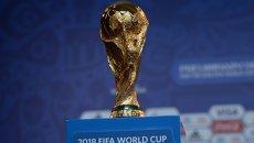 Кубок чемпионата мира. Архивное фото