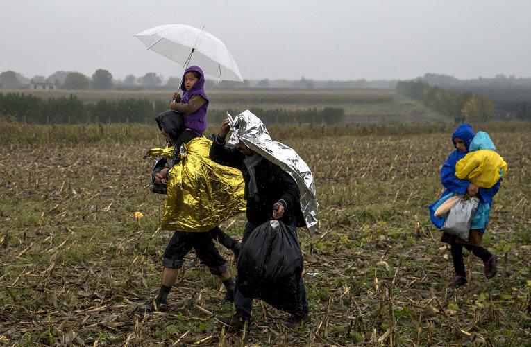 Мигранты на границе между Сербией и Хорватией