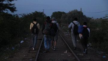 Беженцы переходят границу Сербии и Венгрии в районе поселка Реске. Архивное фото