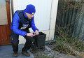 Наблюдатели Специальной мониторинговой миссии ОБСЕ и СЦКК осмотрели место минометного обстрела в Куйбышевском районе Донецка