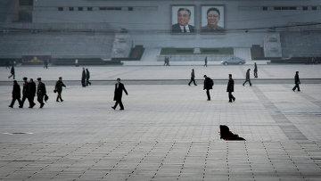 Будни Северной Кореи. Архивное фото