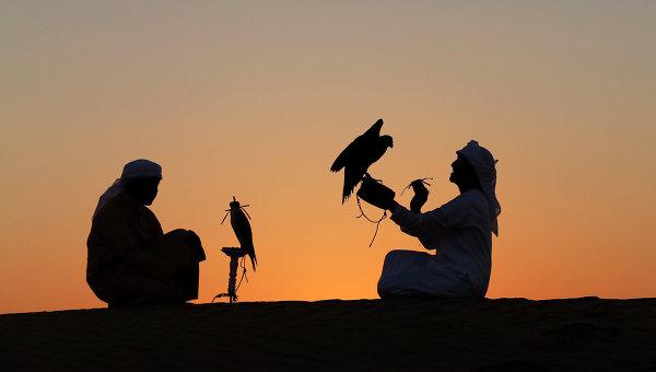 Сокол в Абу-Даби. Архивное фото