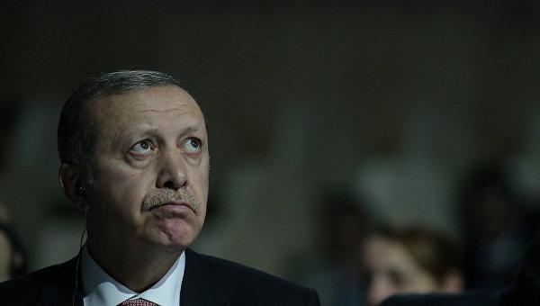 Президент Турции Реджеп Тайип Эрдоган на климатической конференции ООН в Париже. Архивное фото