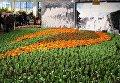 """Международная сельскохозяйственная выставка """"Зеленая неделя"""" в Берлине"""
