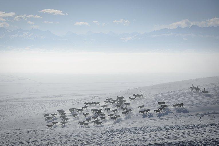 Пастухи скачут на лошадях по заснеженному склону в Китае