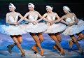 Артисты Театра ледовых миниатюр в сцене из ледового спектакля Лебединое озеро