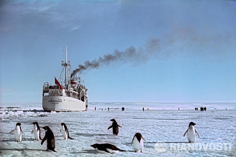 Теплоход Кооперация у берегов Антарктиды