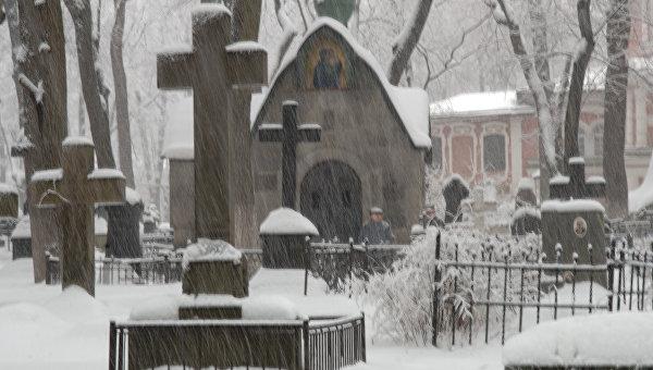 Донской монастырь. Зимний вид