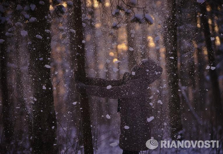 Девочка стряхивает снег с деревьев в зимнем лесу в Санкт-Петербурге
