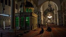 Верующие у гробницы Иоанна Крестителя в мечети Омейядов в Дамаске