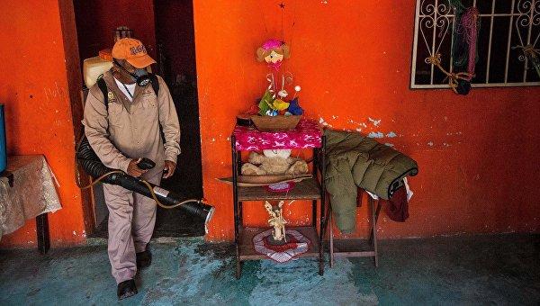 Медработник распыляет инсектициды для борьбы с комарами, переносящими вирус Зика в Мексике. Архивное фото