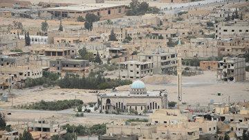 Вид на центральную часть современной Пальмиры. Архивное фото