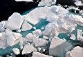 Северный Ледовитый океан. 19 августа 2009