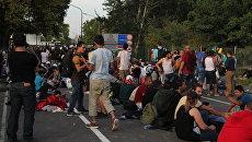 Беженцы на сербской границе ждут возможности перейти на венгерскую сторону