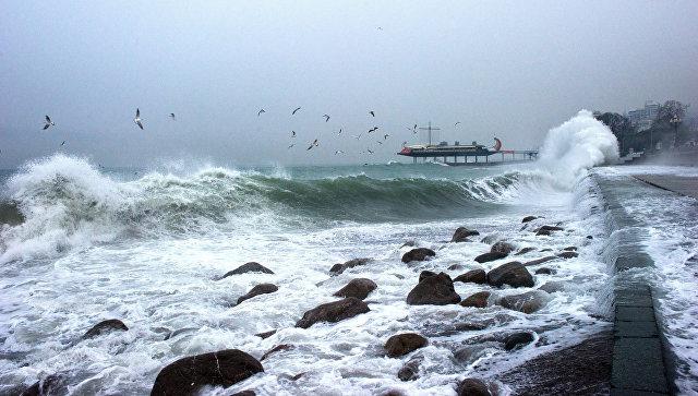 Следствие занялось поиском экипажа яхты, потерпевшей крушение вПриморье