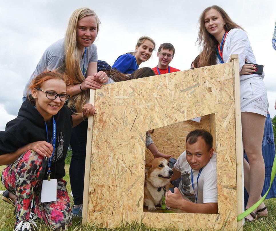 Корги Чака и студенты Школы тестируют будки, построенные для петербургского приюта Верность