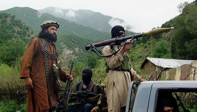 Члены движения Талибан. Архивное
