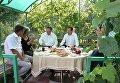 Дмитрий Медведев во время встречи с представителями садоводческих, огороднических и дачных хозяйств в поселке Щетинка Курской области. 22 августа 2016