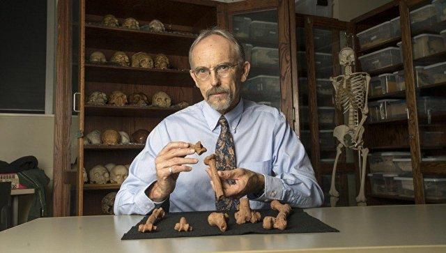 Ученые: Австралопитек Люси, древнейший изизвестных науке людей, погибла, упав сдерева