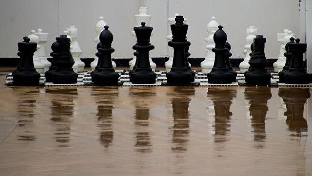 Шахматные фигуры. Архивное фото