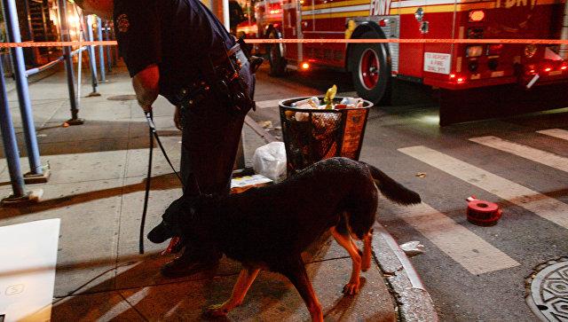Взрывы вНью-Йорке: подозреваемый афганец купил детали для бомбы наeBay