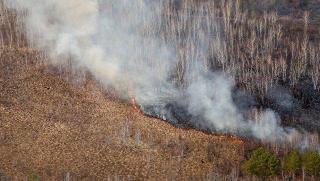 ВСеверо-Байкальском лесничестве ввели режим ЧС— Пожары вБурятии