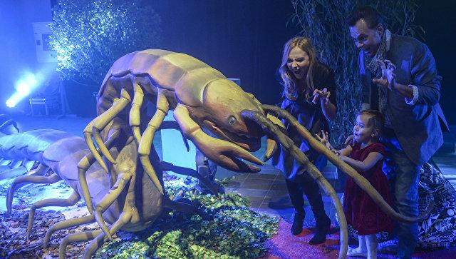 Главная/ Новости /Люди сфамилиями, связанными смиром насекомых,