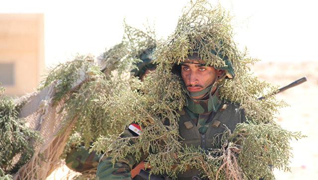 Египетские военнослужащие. Архивное фото