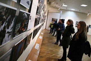 Выставка победителей конкурса имени Стенина в Краснодаре